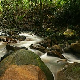 River Flow by Mulawardi Sutanto - Landscapes Waterscapes ( waterflow, kalimantan, eiria, river, travel, park, singkawang )