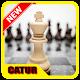 Catur Offline Download for PC Windows 10/8/7