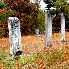 Fall by Martin Stepalavich - City,  Street & Park  Cemeteries (  )
