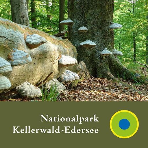 Nationalpark Kellerwald - en