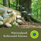 Nationalpark Kellerwald - en