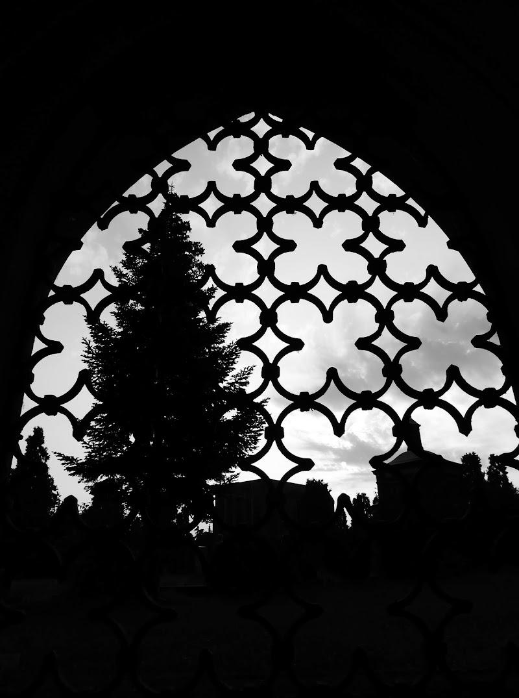 Una finestra sul cimitero di Adam98