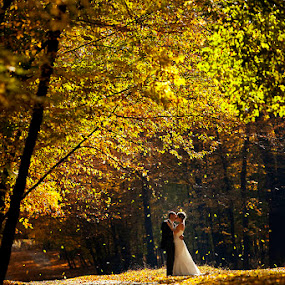 by Petrica Tanase - Wedding Bride & Groom