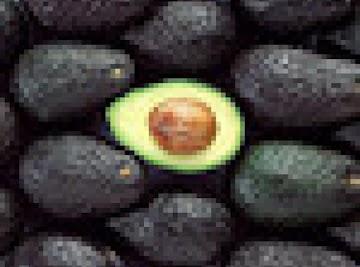 Avocado Enchiladas Vegetarian Style With Cilantro Lime Cream Sauce Recipe