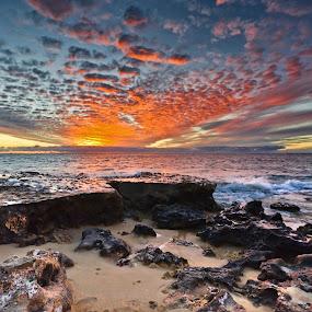 Sunset  by Loredana  Smith - Landscapes Waterscapes ( splash, dune, solitude, travel, remote, beach, sky, nature, surf, climate, leisure, tourism, tourist, traveling, serene, australia, scene, view, panoramic, culture, shore, australian, tropical, ocean, beauty, landscape, coastline, romance, escape, coast, sun, tranquil, sunny, idyllic, water, sand, seashore, trace, waves, sea, seascape, vacations, relaxation, paradise, deserted, enjoyment, color, sunset, summer )