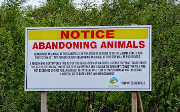 Photo: Animal Signage