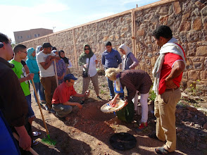 Photo: Institut Technologie Hotellère et Touristique, Ouarzazate. We work with the Groasis Waterboxx to plant trees.