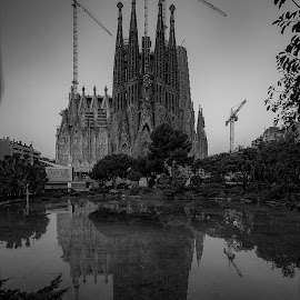 Sagrada Familia by VAM Photography - Buildings & Architecture Places of Worship ( b&w, church, exterior, travel, architecture )