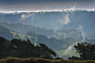 Photo: Misty autumn mornings... #ukphotographycommunity  #landscapephotography  #pentaxk5