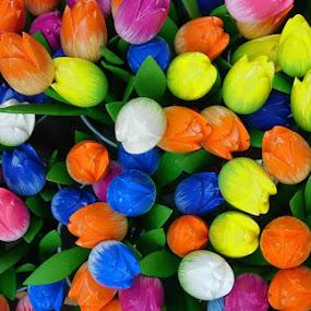 by Forastico Bi - Nature Up Close Flowers - 2011-2013