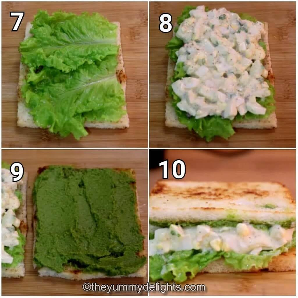 step by step image collage of assembling the egg salad sandwich