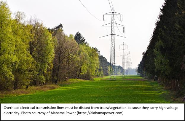 electrical transmission line