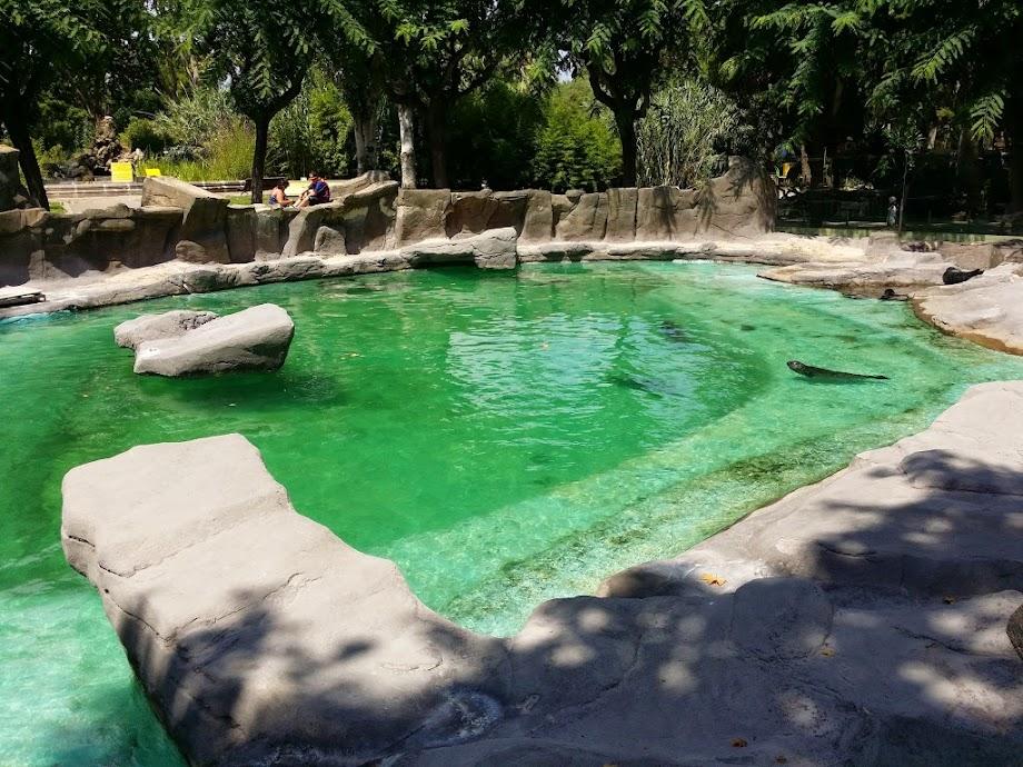 Foto Zoo Barcelona 3