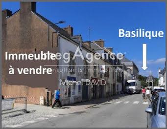 locaux professionels à Sainte-Anne-d'Auray (56)