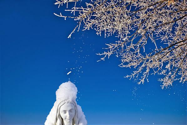 Madonna della neve. di Daimon