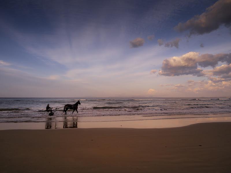 equitazione di fabio_sartori