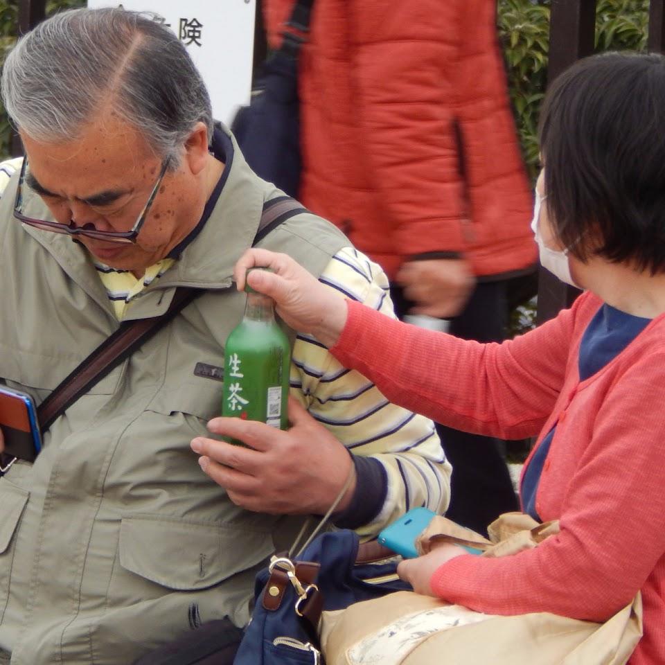 couple age japonais the vert