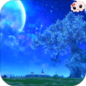 Night Magic Plains Wallpaper