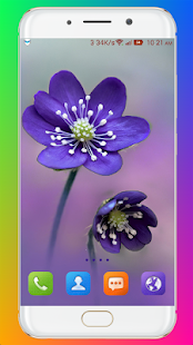 Download Purple Flower Wallpaper For PC Windows and Mac apk screenshot 14