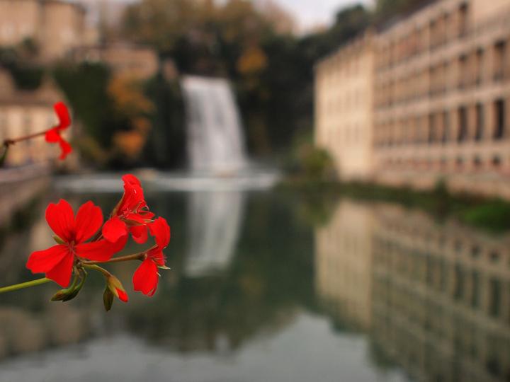 Dettagli in rosso di Mirko Macari Fotografia