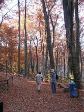 Photo: BB040360 Ojcow - kolory jesieni