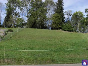 terrain à Rimont (09)