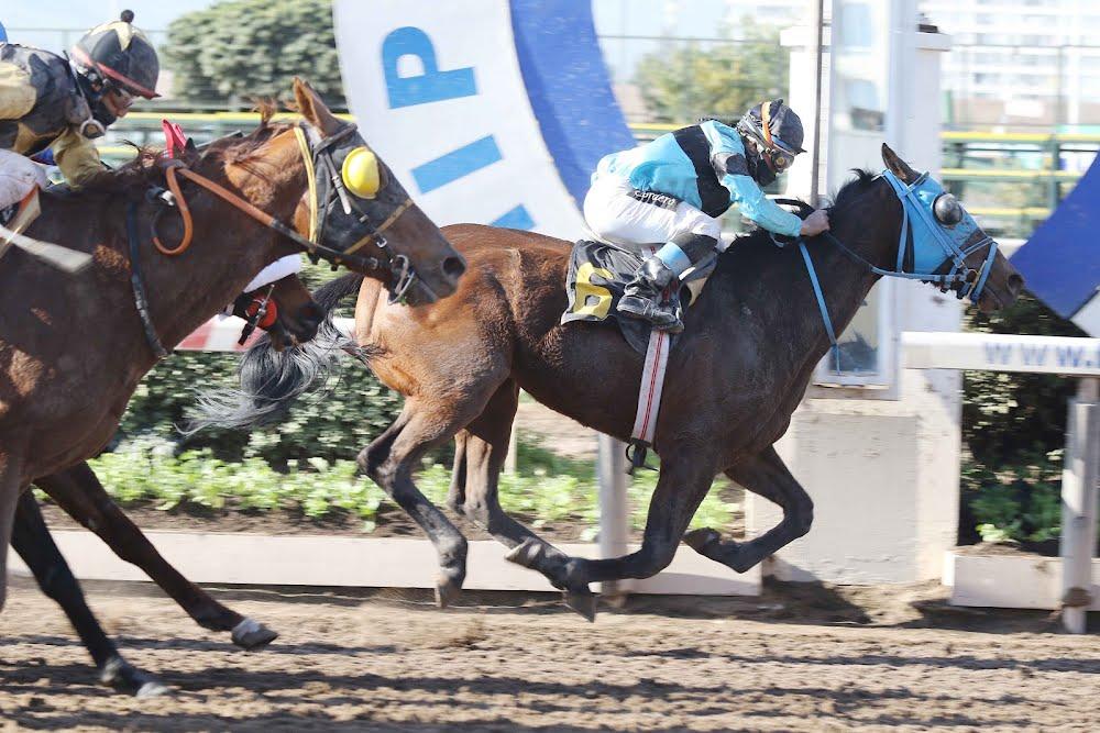JHON BERNA (10ª Carrera) - Soc. Hipódromo Chile S.A.