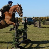 Horse Jumping Wallpapers in HD