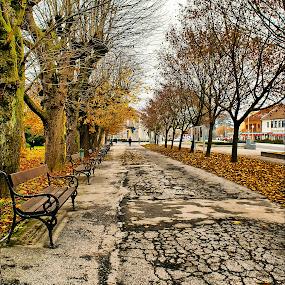 Koprivnica- Croatia by Branka Radmanić - City,  Street & Park  City Parks ( park, fall, croatia, koprivnica, branka )