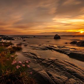 Elements by Patrick Pedersen - Landscapes Waterscapes ( water, sky, waterscape, sunset, colors, seascape, landscape, elements )