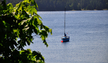 Photo: Sailboat in Departure Bay with Newcastle Island in the background