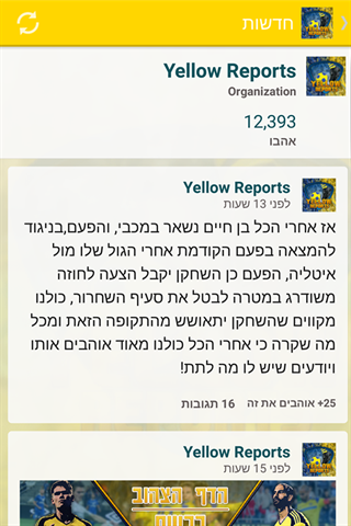 Yellow Reports- screenshot