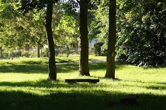 Photo: Samtens - grüne Oase im Dorf