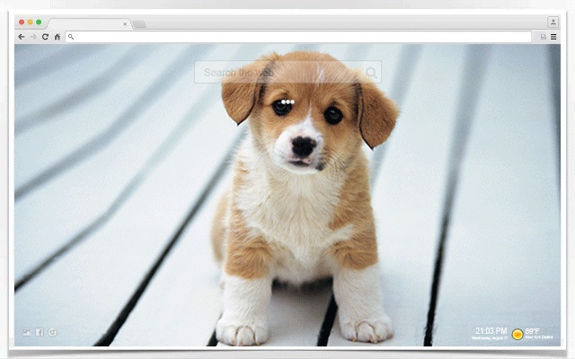 Remove wallpaper google chrome wall ppx - Chrome web store wallpaper ...