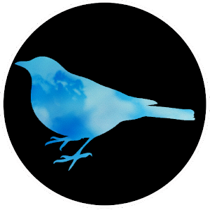 [VR] Blue Bird