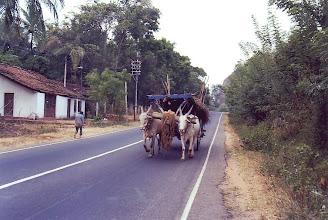 Photo: #016-Sur la route de Polonnaruva