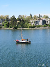 Photo: (Year 2) Day 331 - Waterfront in Victoria #2