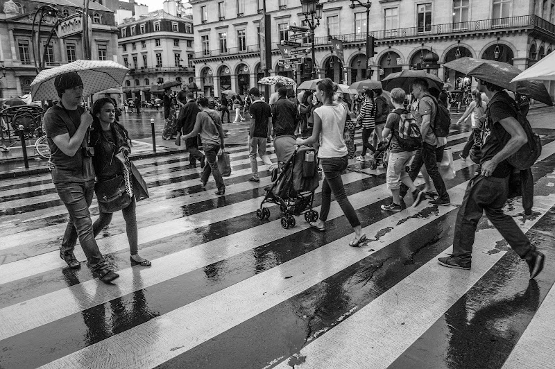 Andando al Louvre sotto la pioggia di pepitosbazzeguty
