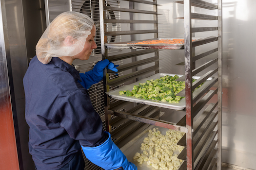 Do You Know the Best Food Storage Options for Your Business?