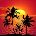 Tropical Live Wallpaper APK