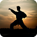 Martial Arts Live Wallpaper icon
