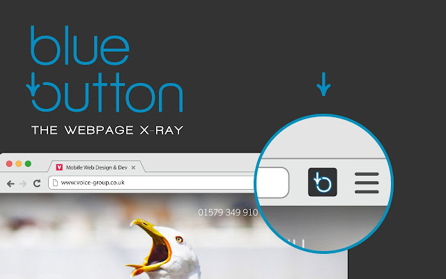 Blue Button | the webpage X-ray