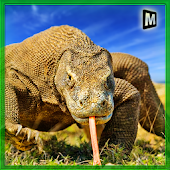 Wild Komodo Dragon War