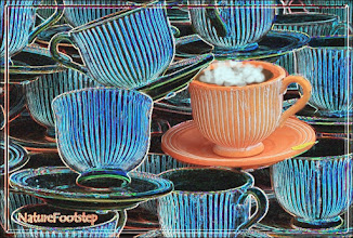 Photo: Standing out, coffee time! © NF PhotoArt 170228 http://nfverk.blogspot.se/2017/02/standing-out-coffee-time.html