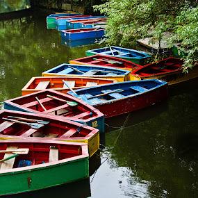 Play boats by Wilfredo Garrido - City,  Street & Park  Amusement Parks ( parks, street, amusement boats, amusement parks, city )