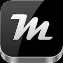 Metallic Theme icon