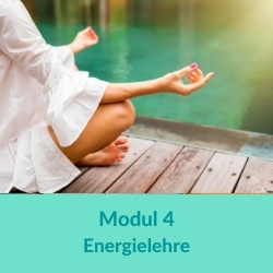 100 h Yogaübungsleiter Energielehre