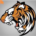 TigerAndGoats
