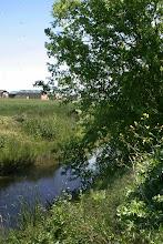 Photo: Macero Canal