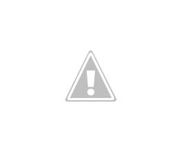 Photo: Hi, I'm Mr Green and I still need a home. I have a sweet gentle temperament. I have a medium long coat with a few waves.